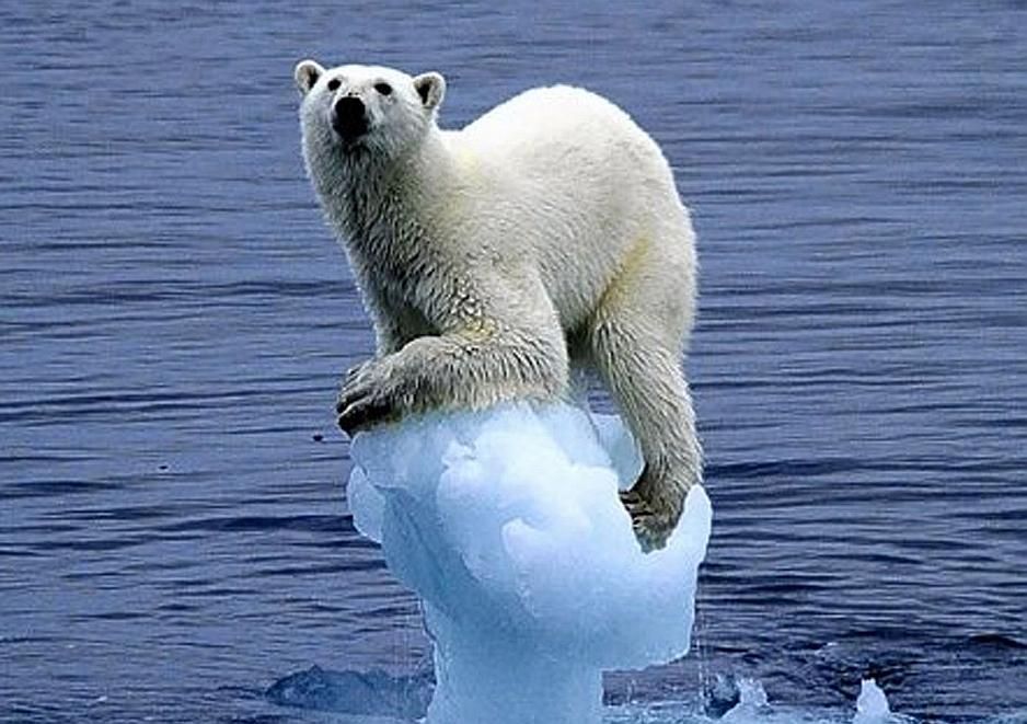 El Calentamiento Global nos va a dejar sin casquetes polares