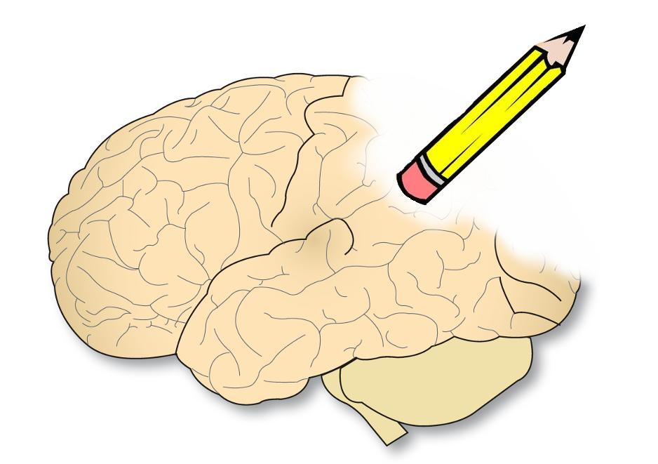 El Alzheimer destruye las capacidades cognitivas