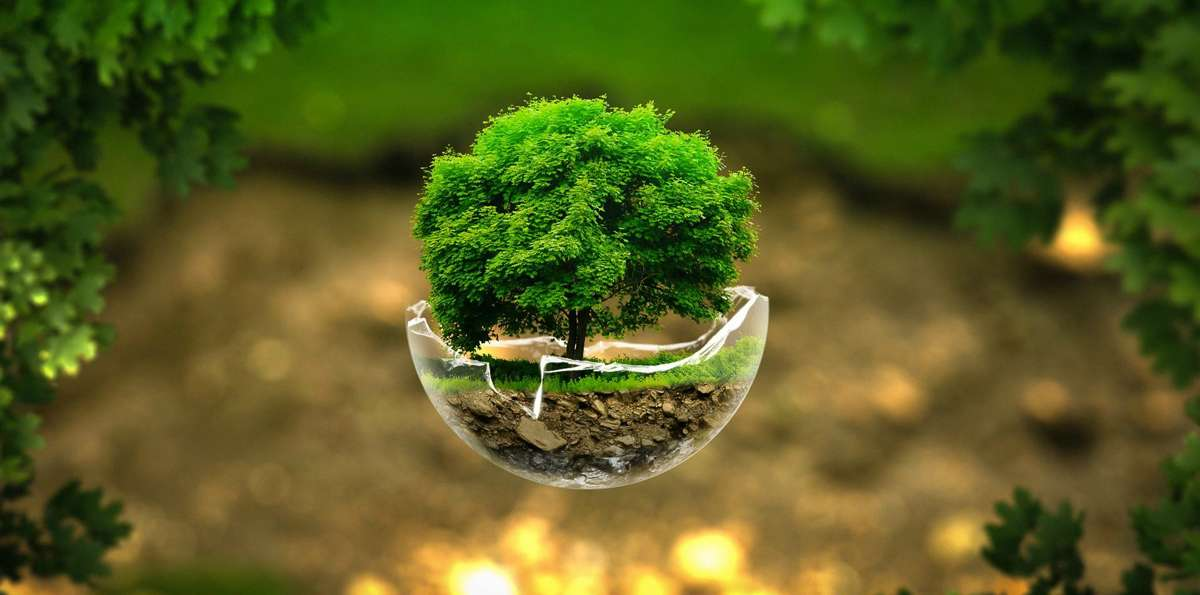 La tierra se defiende contra el cambio climático