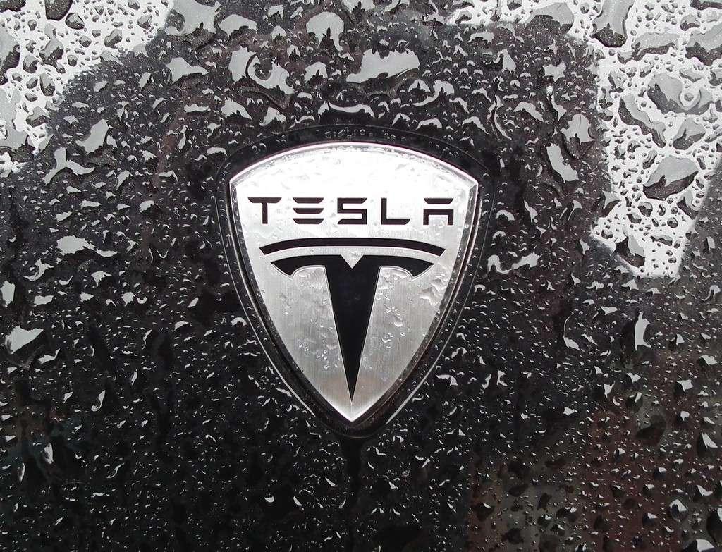 ¿Quieres ver a través de los ojos de un Tesla Autónomo?