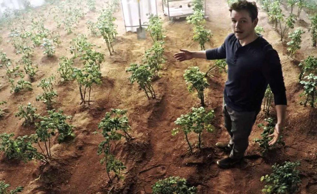 Si, se puede cultivar papas en Marte y hay prueba científica