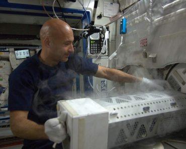 SpaceX lleva una proteína a la ISS para estudiar el Parkinson
