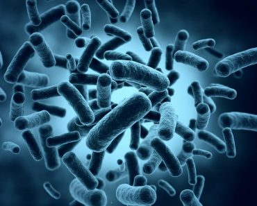 Klebsiella, una bacteria para descontaminar el agua
